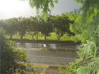 Sunshower in Mackay