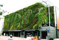 Vertical garden as it is known today