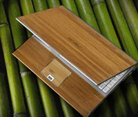 Bamboo Laptop
