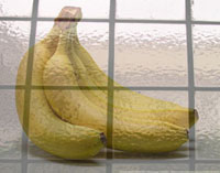 Bananas behind frosted glass