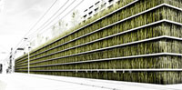 Grass forms walls for carpark